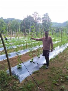 SMFI 2 225x300 - KSK trainee now gets double yield, income from farm produce