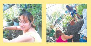 SM Foundation online 1 300x151 - Empowering urban communities through farming