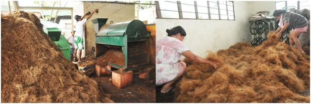Villar coconut3 - Villar turns coconut waste into a viable source of income