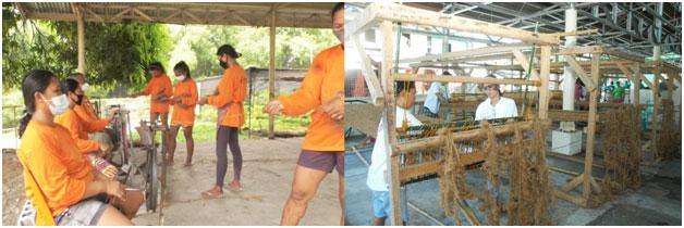 Villar coconut4 - Villar turns coconut waste into a viable source of income