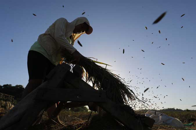 Agriculture production shrinks 3.3%